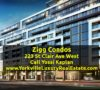 223 St Clair Ave West - Zigg Condos for Sale